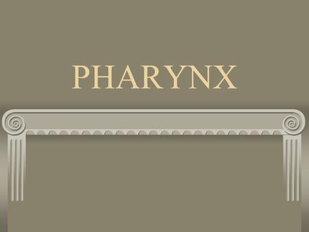 PHARYNX. Plays a part in both digestive system and respiratory system.