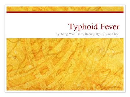 Typhoid Fever By: Sang Woo Nam, Britney Byun, Staci Shon.