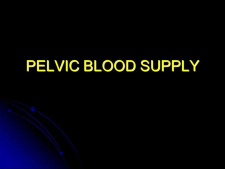 PELVIC BLOOD SUPPLY.