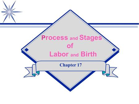 Process and Stages of Labor and Birth Chapter 17.