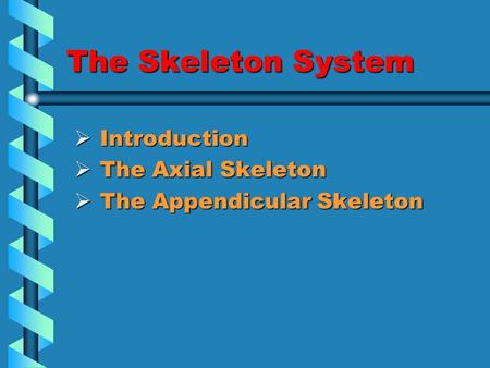 The Skeleton System  Introduction  The Axial Skeleton  The Appendicular Skeleton.