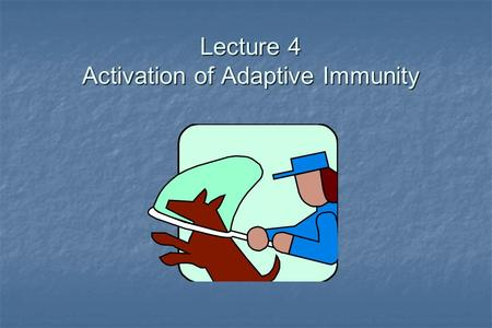 Lecture 4 Activation of Adaptive Immunity. Overview In order to initiate an immune response antigen must be recognized. In order to initiate an immune.