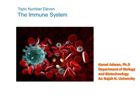 Topic Number Eleven The Immune System.