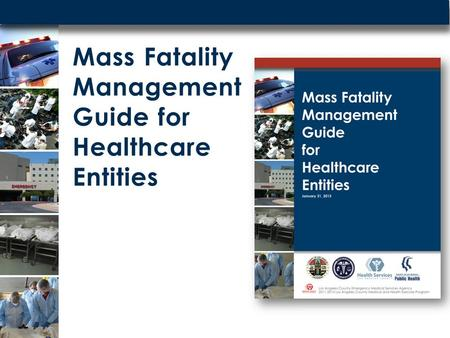 Mass Fatality Management Guide for Healthcare Entities.