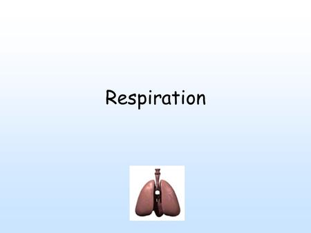 Respiration. Cells - energy to do work - stored as organic molecules - broken down to get energy. 2 ways - 1 in absence of oxygen (fermentation). Other.