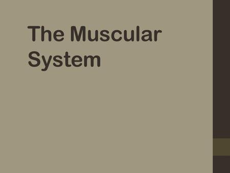 The Muscular System. Muscles are responsible for all types of body movement BECAUSE ……….! They contract – get shorter Three basic muscle types are found.
