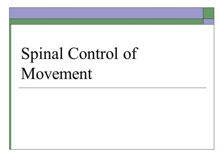 Spinal Control of Movement. Midterm 2 Results Types of Muscles  Smooth – digestive tract, arteries  Striated: Cardiac – accelerates or slows heart.
