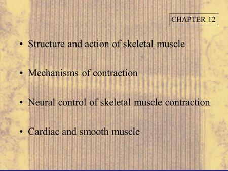 Structure and action of skeletal muscle Mechanisms of contraction