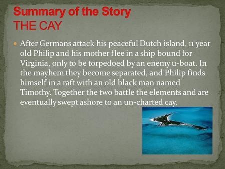 the cay short summary