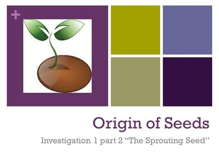 "Investigation 1 part 2 ""The Sprouting Seed"""