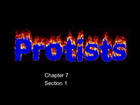 Chapter 7 Section 1. What is a Protist? Eukaryotes, (have nuclei) Live in moist surroundings. Most are unicellular, but some are multicellular. Some are.