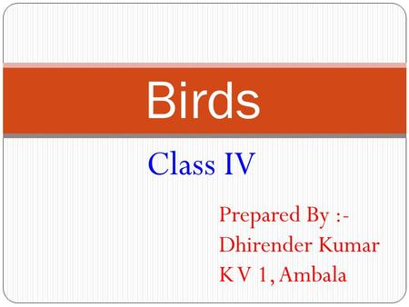 Birds Class IV Prepared By :- Dhirender Kumar K V 1, Ambala.