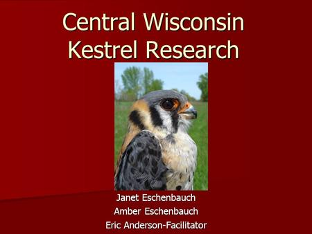 the wisconsin escort Amber midwest of