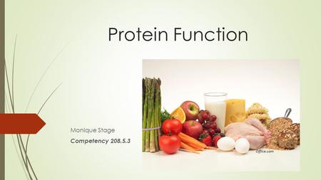 Protein Function Monique Stage Competency 208.5.3 Office.com.