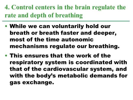 While we can voluntarily hold our breath or breath faster and deeper, most of the time autonomic mechanisms regulate our breathing. This ensures that the.