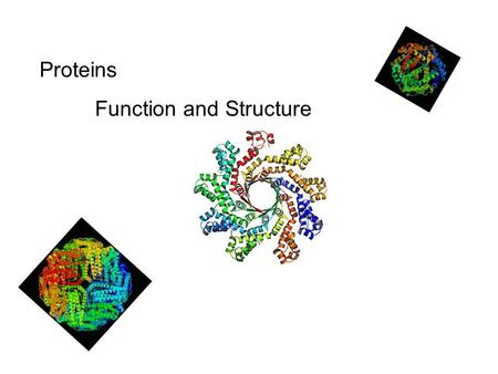Proteins Function and Structure.