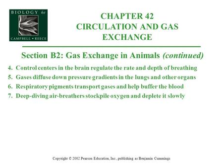 CHAPTER 42 CIRCULATION AND GAS EXCHANGE Copyright © 2002 Pearson Education, Inc., publishing as Benjamin Cummings Section B2: Gas Exchange in Animals (continued)