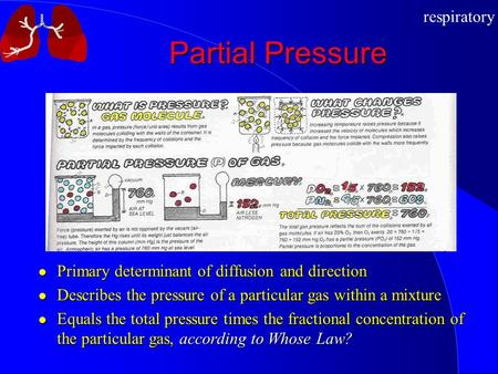 Respiratory Partial Pressure Primary determinant of diffusion and direction Describes the pressure of a particular gas within a mixture Equals the total.