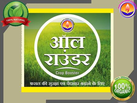 आल राउंडर is a broad spectrum, high energy plant growth promoter with ground breaking effect on plant growth through high bio induced activities. Along.