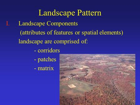 Landscape Pattern I.Landscape Components (attributes of features or spatial elements) landscape are comprised of: - corridors - patches - matrix.