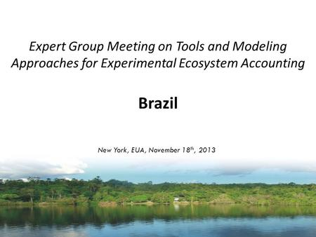 Expert Group Meeting on Tools and Modeling Approaches for Experimental Ecosystem Accounting Brazil New York, EUA, November 18 th, 2013.