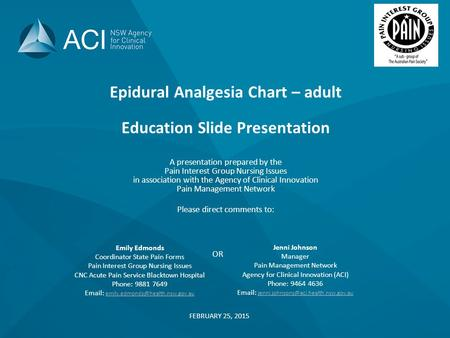 Epidural Analgesia Chart – adult Education Slide Presentation A presentation prepared by the Pain Interest Group Nursing Issues in association with the.