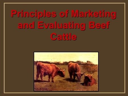 Principles of Marketing and Evaluating Beef Cattle