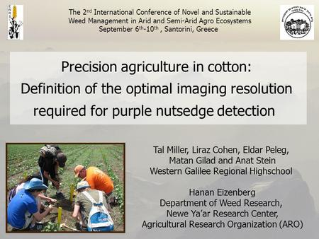 Precision agriculture in cotton: Definition of the optimal imaging resolution required for purple nutsedge detection Tal Miller, Liraz Cohen, Eldar Peleg,