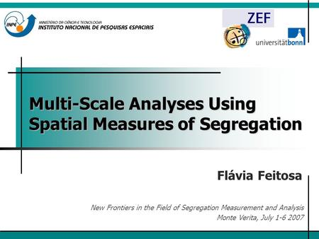 Multi-Scale Analyses Using Spatial Measures of Segregation Flávia Feitosa New Frontiers in the Field of Segregation Measurement and Analysis Monte Verita,