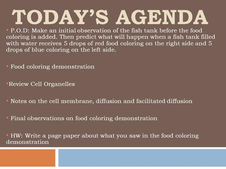 TODAY'S AGENDA P.O.D: Make an initial observation of the fish tank before the food coloring is added. Then predict what will happen when a fish tank filled.