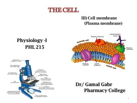 Physiology -I PHL 215 PHL 215 Dr/ Gamal Gabr Pharmacy College Pharmacy College 1.