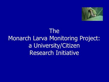 The Monarch Larva Monitoring Project: a University/Citizen Research Initiative.
