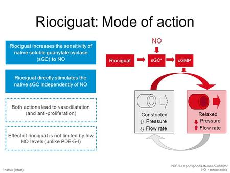 Riociguat directly stimulates the native sGC independently of NO Riociguat increases the sensitivity of native soluble guanylate cyclase (sGC) to NO Both.