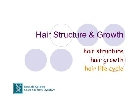 Hair Structure & Growth