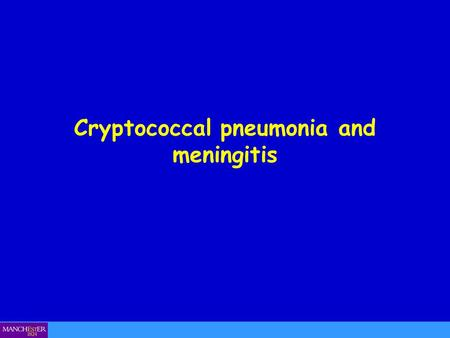 Cryptococcal pneumonia and meningitis. Cryptococcus neoformans.