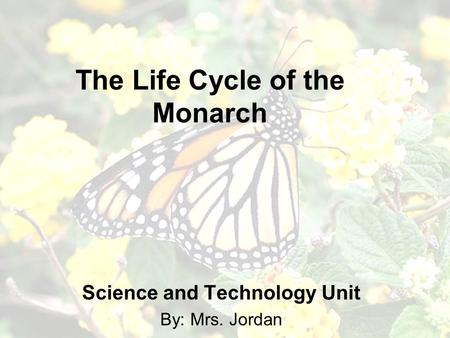 The Life Cycle of the Monarch Science and Technology Unit By: Mrs. Jordan.
