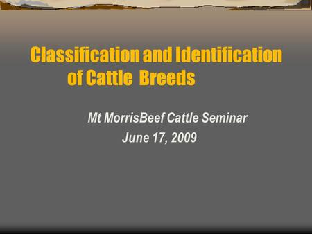 Mt MorrisBeef Cattle Seminar June 17, 2009 Classification and Identification of Cattle Breeds.