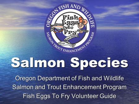 Salmon Species Oregon Department of Fish and Wildlife