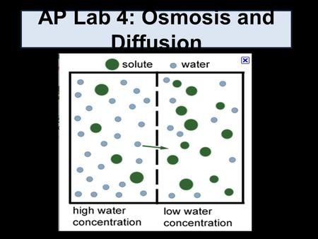 AP Lab 4: Osmosis and Diffusion. Purpose 1. Investigate processes of diffusion and osmosis in a model membrane system, and 2. Investigate effect of solute.