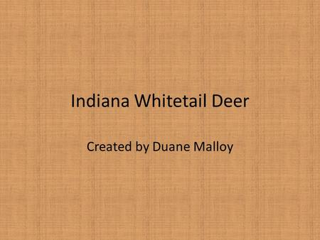 Indiana Whitetail Deer Created by Duane Malloy. Indiana Whitetail Deer Very likely to be seen at O'Bannon Woods. Close to extinction in Indiana in the.