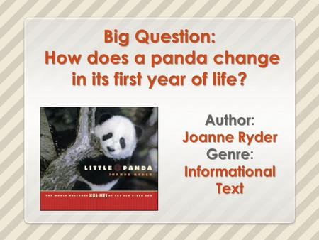 Big Question: How does a panda change in its first year of life?
