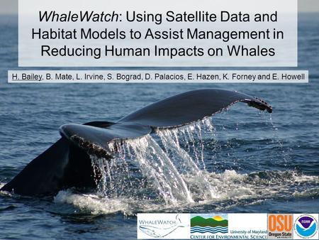 WhaleWatch: Using Satellite Data and Habitat Models to Assist Management in Reducing Human Impacts on Whales H. Bailey, B. Mate, L. Irvine, S. Bograd,