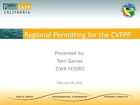 Presented by: Terri Gaines DWR FESSRO February 28, 2014 Regional Permitting for the CVFPP.