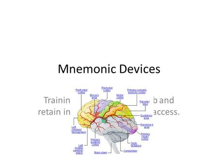 Mnemonic Devices Training your brain to absorb and retain information for future access.