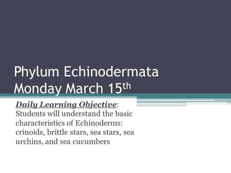 Phylum Echinodermata Monday March 15 th Daily Learning Objective: Students will understand the basic characteristics of Echinoderms: crinoids, brittle.