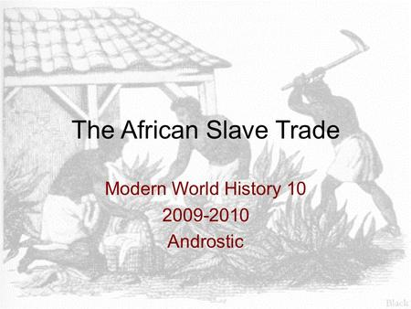 The African Slave Trade Modern World History 10 2009-2010 Androstic.