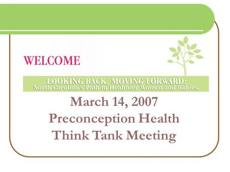 March 14, 2007 Preconception Health Think Tank Meeting.