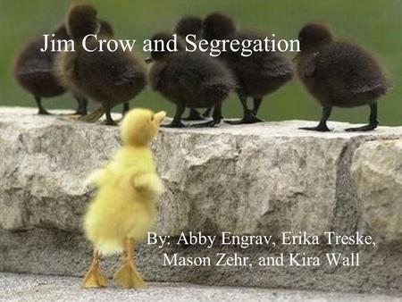 Jim Crow and Segregation By: Abby Engrav, Erika Treske, Mason Zehr, and Kira Wall.