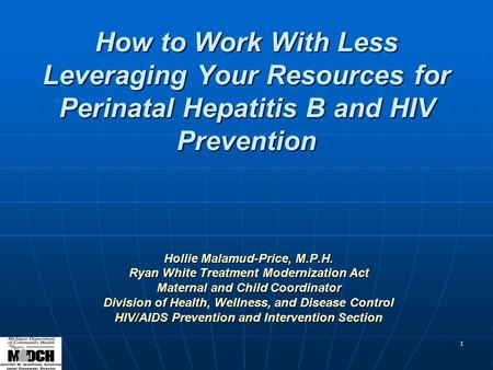 1 How to Work With Less Leveraging Your Resources for Perinatal Hepatitis B and HIV Prevention Hollie Malamud-Price, M.P.H. Ryan White Treatment Modernization.