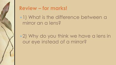 Review – for marks! 1) What is the difference between a mirror an a lens? 2) Why do you think we have a lens in our eye instead of a mirror?